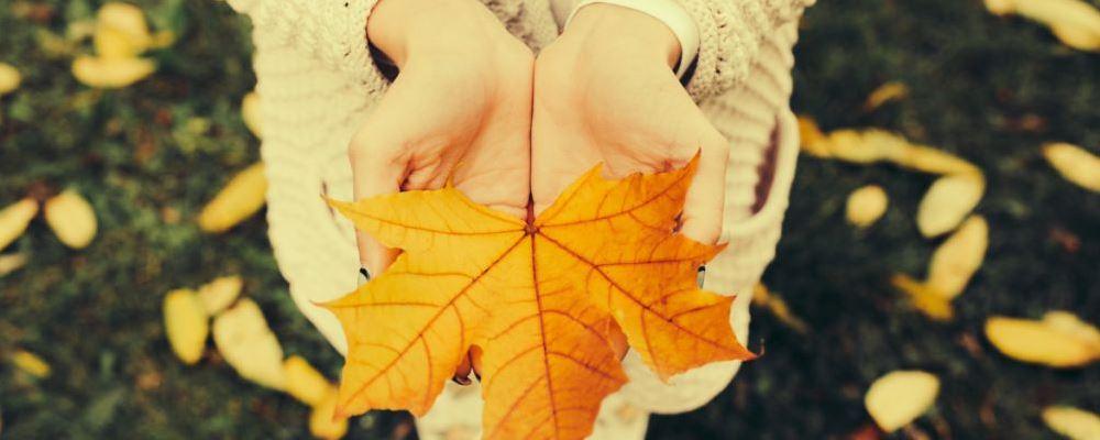 秋季为什么容易情绪低落 秋季如何远离抑郁症 为什么秋季容易情绪低落