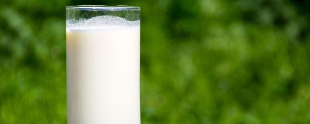 牛奶常喝对身体有好处吗 女人喝什么牛奶好 什么牛奶女人喝了好