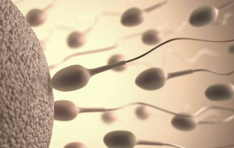 前列腺不育有哪些危害 前列腺不育有什么危害 前列腺不育会导致