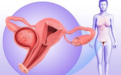 卵巢早衰 卵巢 卵巢早衰表现