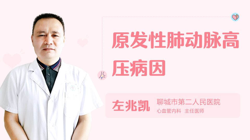 原发性肺动脉高压病因