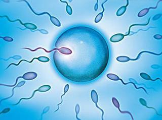 检查男性精子有那些医院