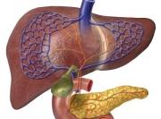 丙肝的早期症状是什么