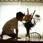 自闭症 患者 在 饮食 上 应该 注意 哪些 问题
