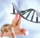 癫痫病 癫痫病遗传 癫痫病因