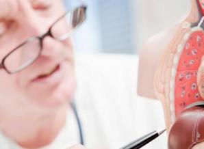探究导致脂肪肝发生的原因有哪些