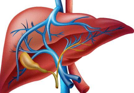 肝病患者饮食禁忌,肝病患者不能吃什么,肝病患者不能吃哪些食物