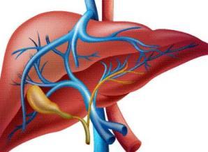 肝癌的早期症状有哪些 饮食保健来帮忙
