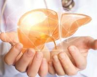 为什么会患上丙肝 丙肝的治疗方法有哪些 丙肝的症状是什么