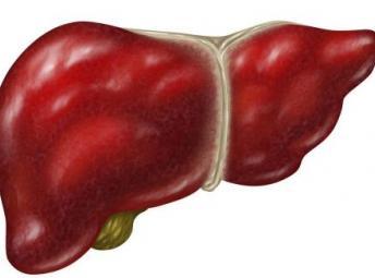 长春秋冬季节肝病易复发 养肝要从睡眠开始