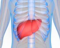 如何治疗乙肝 乙肝治疗的误区有哪些 治疗乙肝的方法有哪些