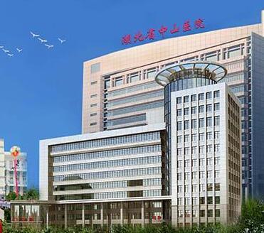 武汉大学中山医院
