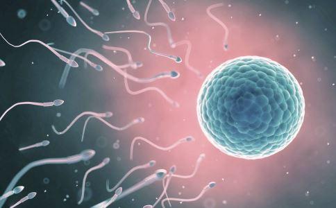精子活力低下怎么办呢?请看下文介绍.  对于精子活力低的注...
