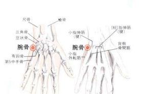 腕骨穴的功效与作用,按摩腕骨穴位的作用,腕骨穴穴位配伍