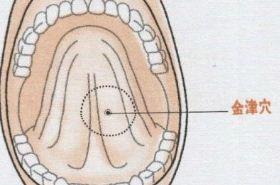 金津穴的功效与作用,按摩金津穴位的作用,金津穴的功效