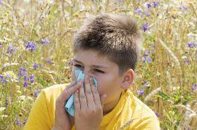 中医治疗鼻炎的偏方,鼻炎怎么治疗,治疗鼻炎的偏方
