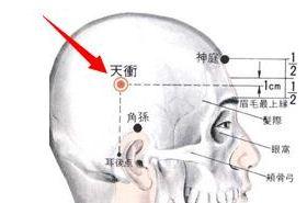 天冲穴的功效与作用,按摩天冲穴的作用,天冲穴的准确位置图