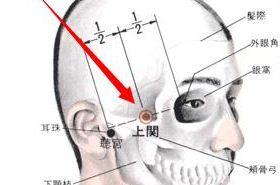 上关穴的功效与作用,上关穴的准确位置图,上关穴在哪里