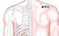 肩井穴的功效与作用 肩井穴的准确位置图 肩井穴的功效
