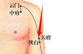 天府穴的功效与作用,天府穴的准确位置,按摩天府穴的作用