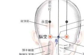 脑空穴的功效与作用,按摩脑空穴的作用,脑空穴的准确位置图
