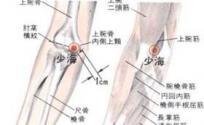 少海穴的功效与作用 按摩少海穴的作用 少海穴的准确位置图
