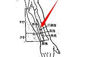 三阳络穴的功效与作用,三阳络穴的准确位置图,按摩三阳络穴的作用