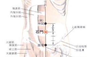 石门穴的功效与作用,石门穴穴位配伍,石门穴的准确位置图