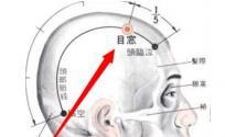 目窗穴的功效与作用 目窗穴的功效 目窗穴的作用