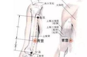 青灵穴的功效与作用,青灵穴的准确位置图,按摩青灵穴的作用