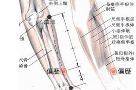 偏历穴的功效与作用,偏历穴的准确位置图,按摩偏历穴的作用