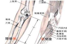 间使穴的功效与作用,按摩间使穴的作用,间使穴的准确位置图