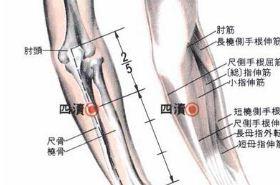 四渎穴的功效与作用,按摩四渎穴的作用,四渎穴的准确位置图
