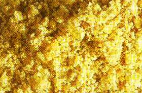 巴豆霜的功效与作用,巴豆霜的功效,巴豆霜是什么
