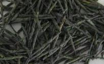 苦丁茶的功效与作用 苦丁茶是什么 苦丁茶的功效