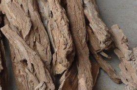 地骨皮的功效与作用,地骨皮是什么,地骨皮的功效