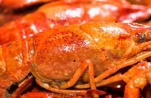 怎么做小龙虾 红烧麻辣随你挑