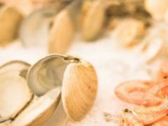 吃花甲的四大功效 孕妇常吃也有益