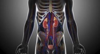 肾衰竭治疗方法 肾衰竭血透治疗好吗 肾衰竭腹透治疗好吗