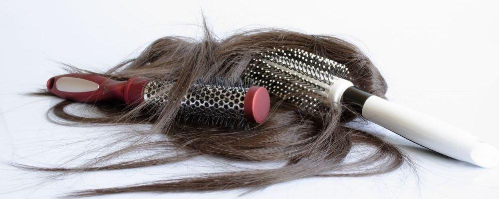 要怎么预防脱发 不洗头就不会掉头发了吗 吃什么食物能预防脱发