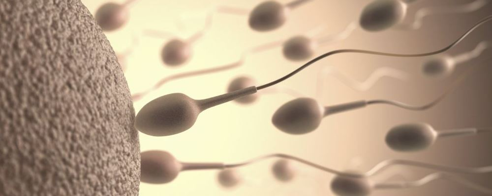 备孕二胎半年 网友好孕经验总结分享