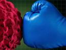 具有抗癌效果的五种中草药