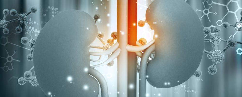 肾炎患者吃什么好 肾炎饮食禁忌 肾炎怎么治疗