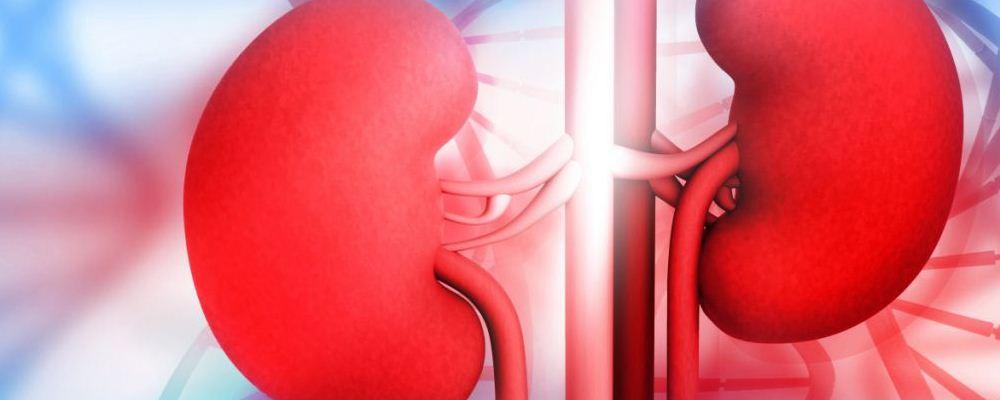 慢性肾炎应该要怎么保养 慢性肾炎怎么饮食 慢性肾炎患者吃什么