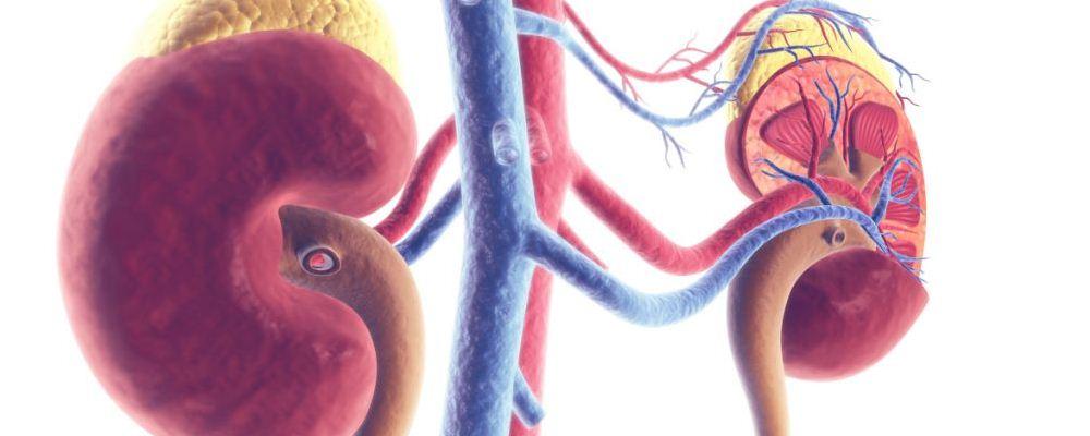 肾炎的症状有哪些 肾炎怎么治疗 肾炎该怎么治疗